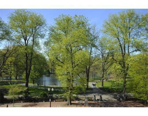 Le Jardin Boston Photo #7